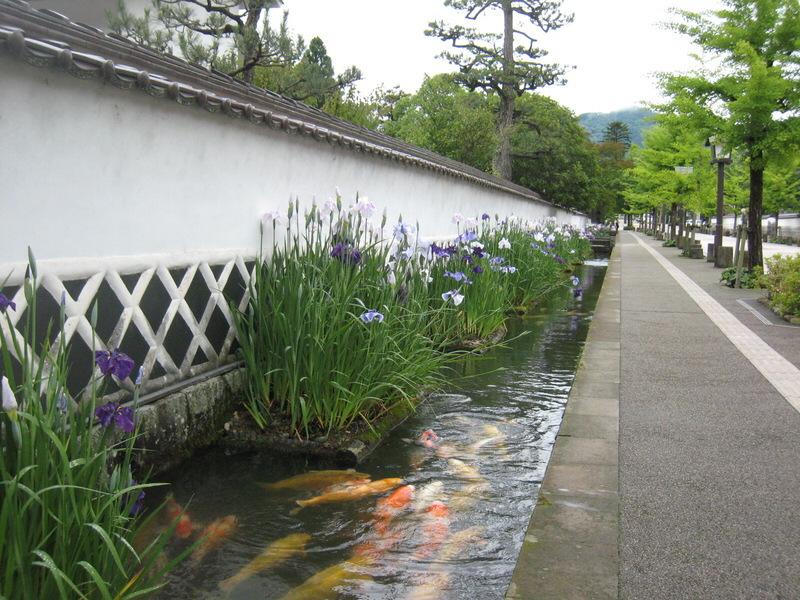 tsuwano-cho2.jpg